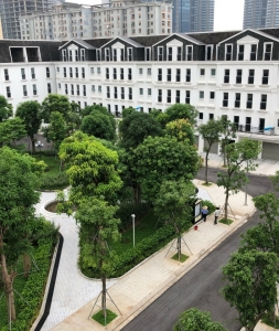 B4 Belleville Nguyễn Chánh